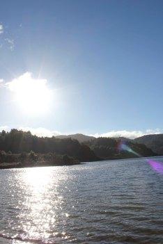 Lake Waikaremoana (153)_1