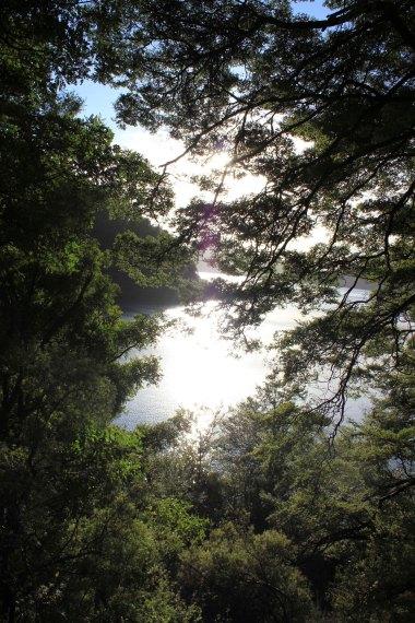 Lake Waikaremoana (203)_1