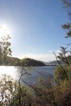 Lake Waikaremoana (226)_1