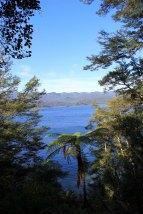 Lake Waikaremoana (255)_1
