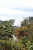 Rotorua (206)_1