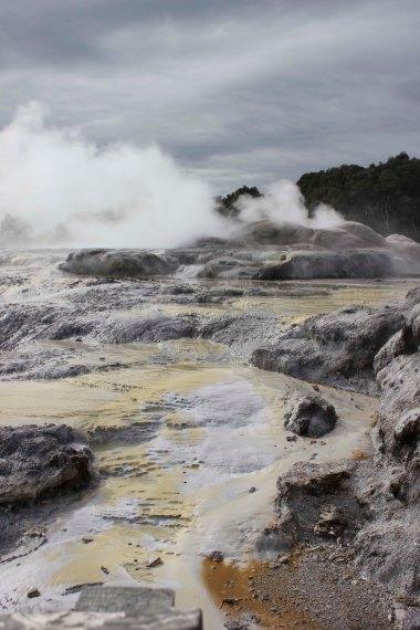 Rotorua (319)_1