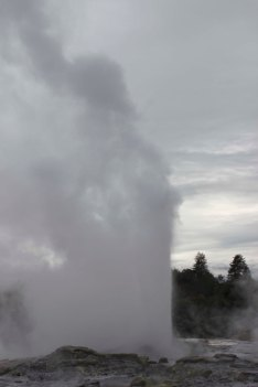 Rotorua (361)_1_1