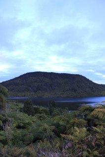 Rotorua (559)_1_1