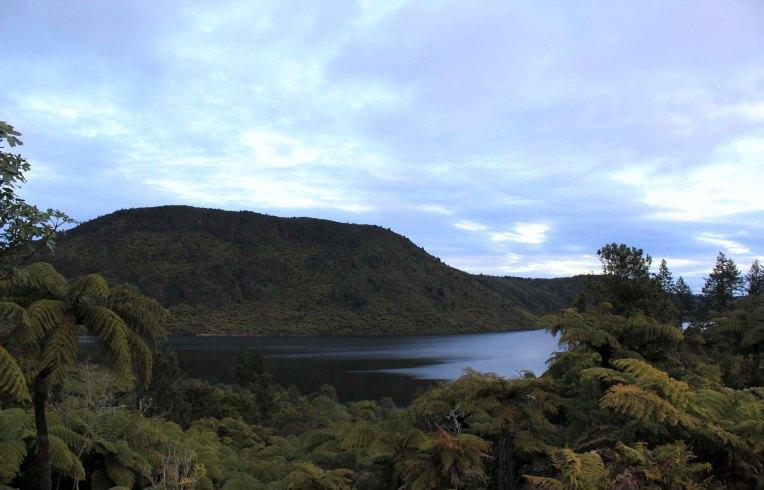 Rotorua (563)_1_1