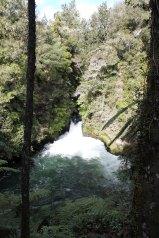Rotorua (621)_1