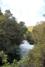Rotorua (662)_1