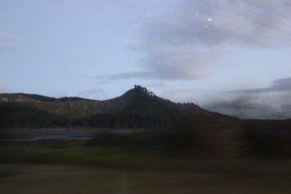 Waihi (72)_1