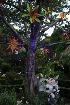 gardenmagic (11)