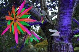 gardenmagic (12)