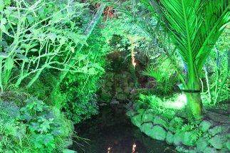 gardenmagic (19)