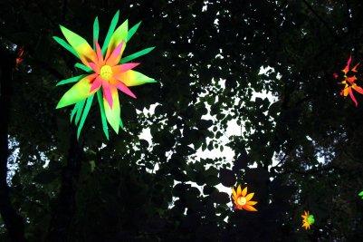 gardenmagic (21)