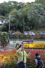 gardenmagic (8)