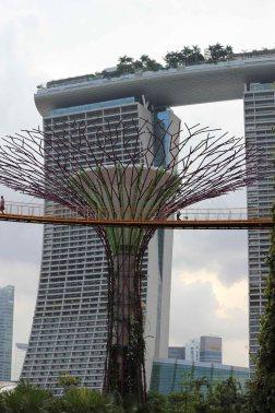 singapour (100)_1