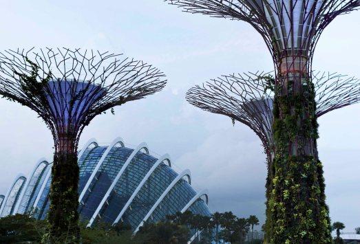 singapour (115)_1_1