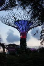 singapour (123)_1