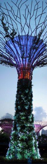 singapour (126)_1