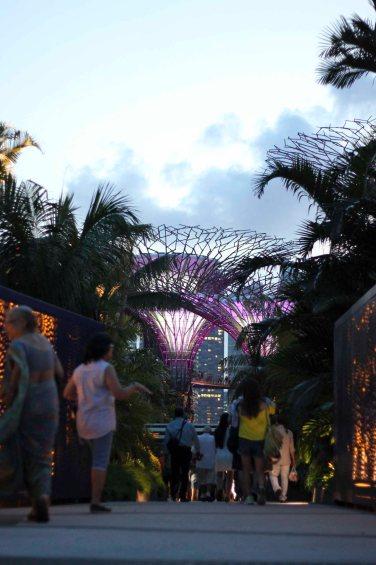 singapour (129)_1