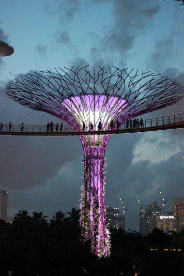 singapour (143)_1