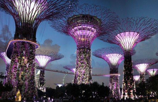 singapour (152)_1