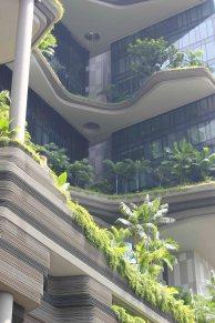 singapour (18)_1