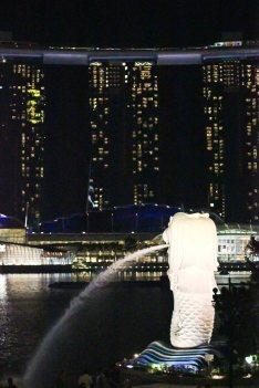 singapour (228)_1_1