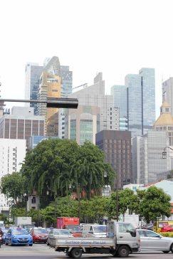 singapour (24)_1