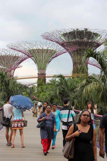 singapour (59)_1